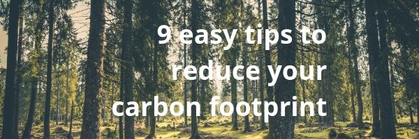 9 easy tips to reduce your carbon footprint