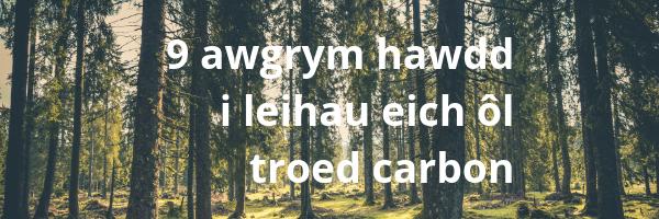 9 awgrym hawdd i leihau eich ôl troed carbon