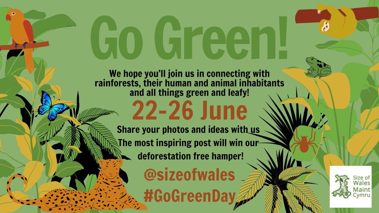 AS GO GREEN DAY 2020 RETURNS ACROSS WALES FOR ANOTHER YEAR OF RAINFOREST FUN, IT IS MORE IMPORTANT THAN EVER THAT WE SHOW OUR SUPPORT FOR TROPICAL FORESTS AND CLIMATE ACTION